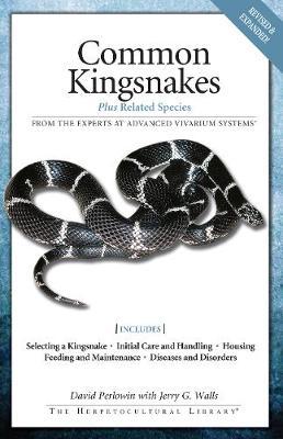 Common Kingsnakes (Paperback)