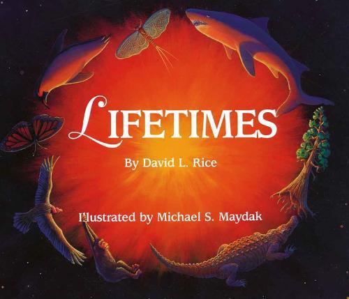 Lifetimes (Paperback)