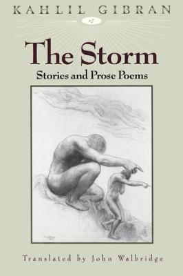 The Storm: Stories and Prose Poems (Hardback)