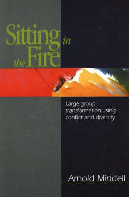 Sitting in the Fire: Large Group Transformation Using Conflict and Diversity (Paperback)