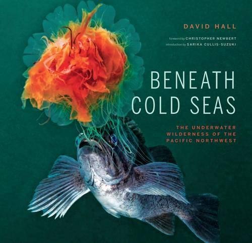 Beneath Cold Seas: The Underwater Wilderness of the Pacific Northwest (Hardback)
