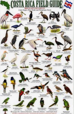 Birds of Wetland Habitats: Cano Negro, Palo Verde and Tempisque Basin - Costa Rica Field Guides S.