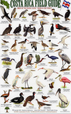 Birds of the Pacific Coast and the Tropical Dry Forest - Costa Rica Field Guides S.