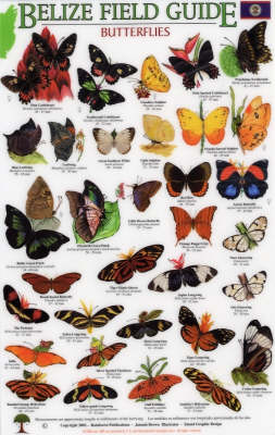 Butterflies - Mexico Field Guides S.