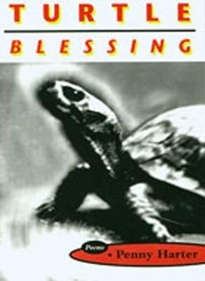 Turtle Blessing (Hardback)