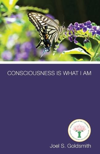Consciousness is What I am (Paperback)