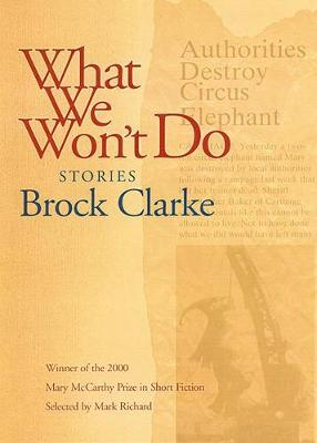 What We Won't Do: Stories (Paperback)