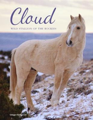 Cloud: Wild Stallion of the Rockies, Revised and Updated (Hardback)