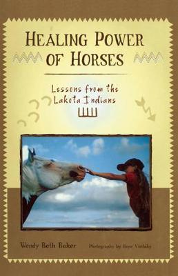 Healing Power of Horses: Lessons from the Lakota Indians (Hardback)
