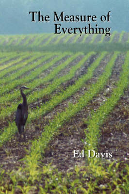 The Measure of Everything (Paperback)