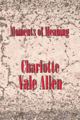 Moments of Meaning (Paperback)