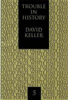 Trouble in History (Paperback)