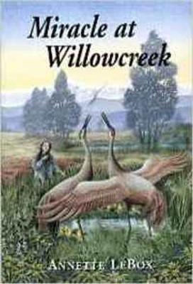 Miracle at Willowcreek (Paperback)