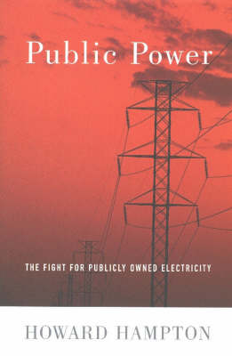 Public Power: The Fight for Publicly Owned Electricity (Paperback)