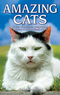 Amazing Cats: Stories of Intuition, Compassion, Mystery & Extraordinary Feats (Paperback)