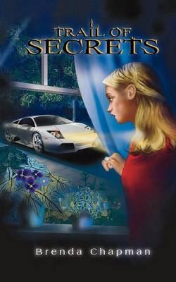 Trail of Secrets: A Jennifer Bannon Mystery - A Jennifer Bannon Mystery 4 (Paperback)