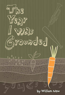 The Year I Was Grounded (Paperback)