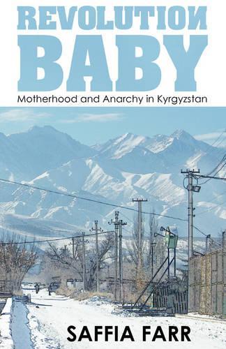 Revolution Baby (Paperback)