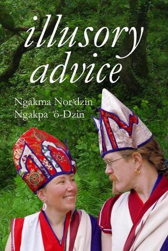 Illusory Advice (Paperback)