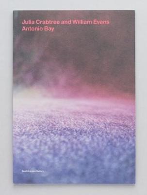 Antonio Bay (Paperback)