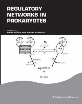 Regulatory Networks in Prokaryotes (Hardback)