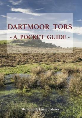 Dartmoor Tors: A Pocket Guide (Paperback)