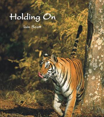 Holding On (Hardback)