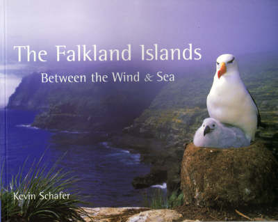 The Falkland Islands: Between the Wind and Sea (Paperback)