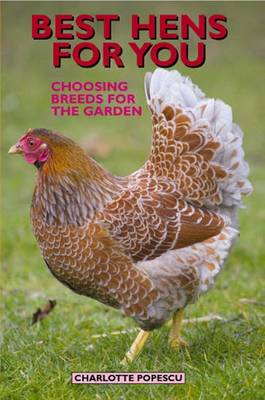 Best Hens for You: Choosing Breeds for the Garden (Paperback)