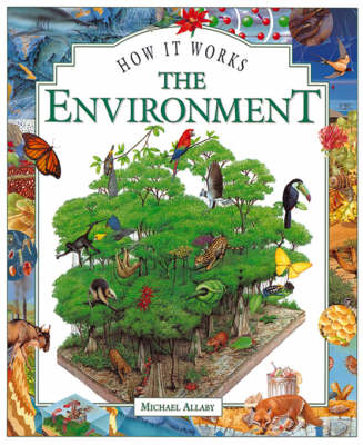 The Environment - How it Works S. (Hardback)