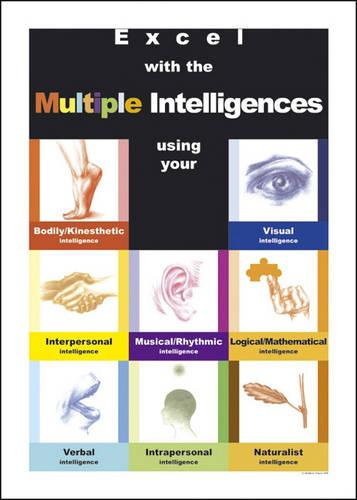 Excel with the Multiple Intelligences (Poster)
