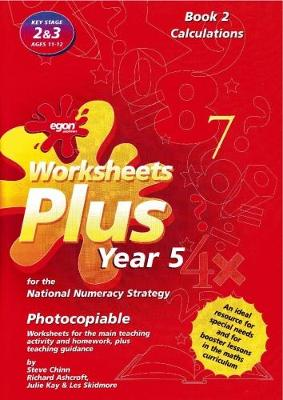 Worksheets Plus for the National Numeracy Strategy Year 5: Calculations Book 2 - Worksheets Plus