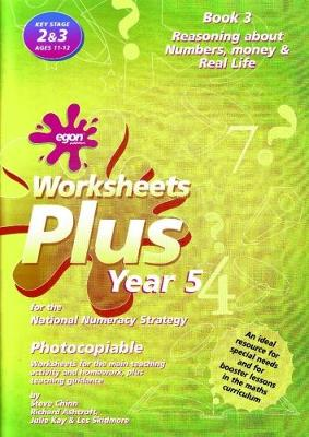 Worksheets Plus for the National Numeracy Strategy Year 5: Solving Problems Book 3 - Worksheets Plus