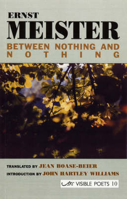 Between Nothing and Nothing (Paperback)