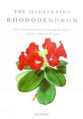Illustrated Rhododendron, The (Hardback)