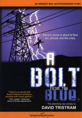 A Bolt From The Blue (Paperback)