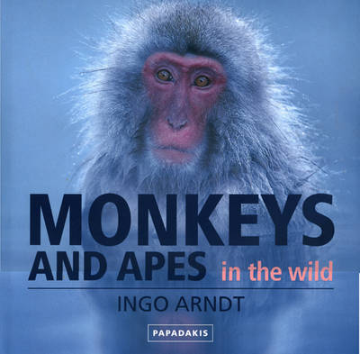 Monkeys and Apes in the Wild (Hardback)