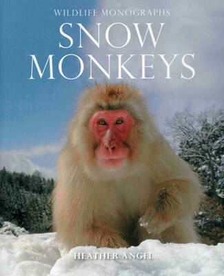 Snow Monkeys: The Gentle Giants of the Forest (Paperback)