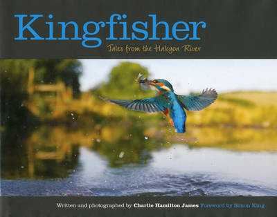 Kingfisher: Tales from the Halcyon River (Hardback)