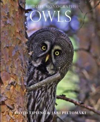 Owls - Wildlife Monographs (Paperback)