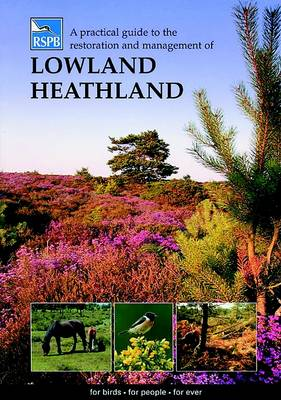 A Practical Guide to the Restoration and Management of Lowland Heathland - RSPB Management Guides (Paperback)