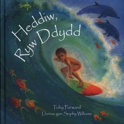 Heddiw, Ryw Ddydd (Hardback)