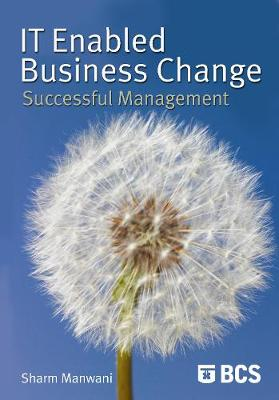 IT-Enabled Business Change: Successful Management (Paperback)