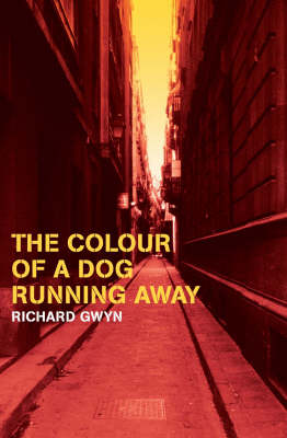 The Colour of a Dog Running Away (Paperback)