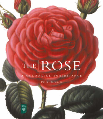 The Rose: A Colourful Inheritance - Mini Flora Editions S. (Hardback)