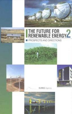 The Future for Renewable Energy 2: Prospects and Directions (Hardback)