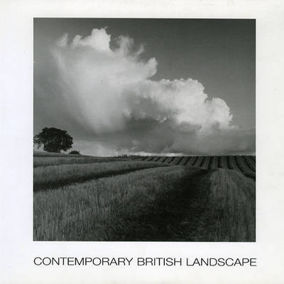 Contemporary British Landscape Painting (Paperback)