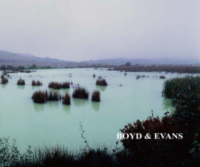 Boyd and Evans: Looking Differently (Paperback)