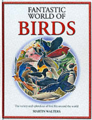 The Fantastic World of Birds (Hardback)