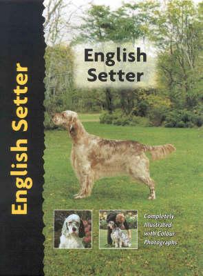 English Setter - Pet Love Dog Breed S. (Hardback)